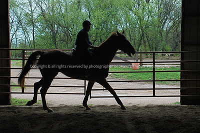 018-horse_n_rider-madison_co-19apr05-0215