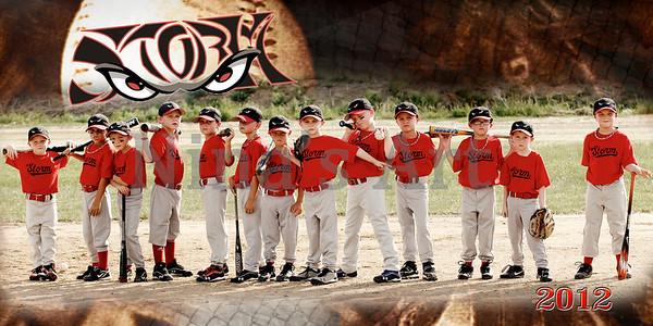 2012 Baseball-Softball Fun Pictures