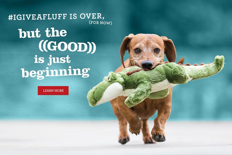 FluffTuff dog toys2.jpg