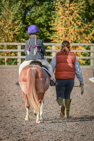 LEC Unaffiliated Dressage, 6th November 2016
