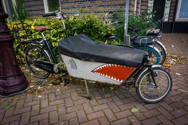 Bikes of Amsterdam