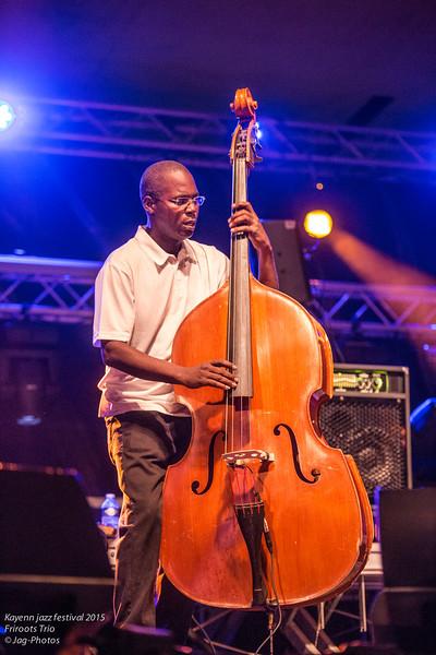 Kayenn jazz festival 2015 Friroots Trio