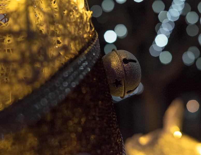 hudsongardenxmaslights-0936.jpg