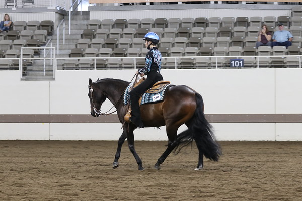 Class 45 - Champion Junior/Int. Western Horsemanship
