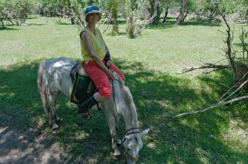 Helgas Pferd wollte lieber was essen als vorwärts gehen.