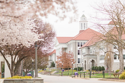 Harrisonburg Spring 2020