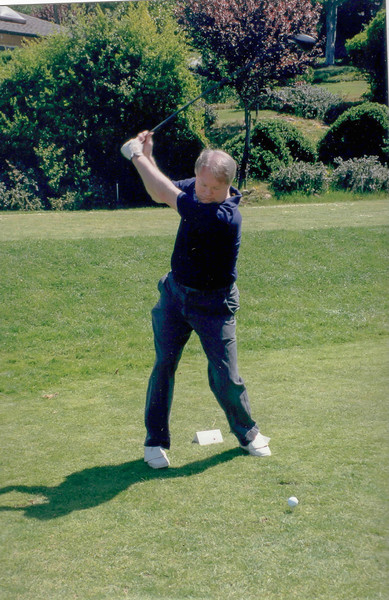 The Swing.jpg