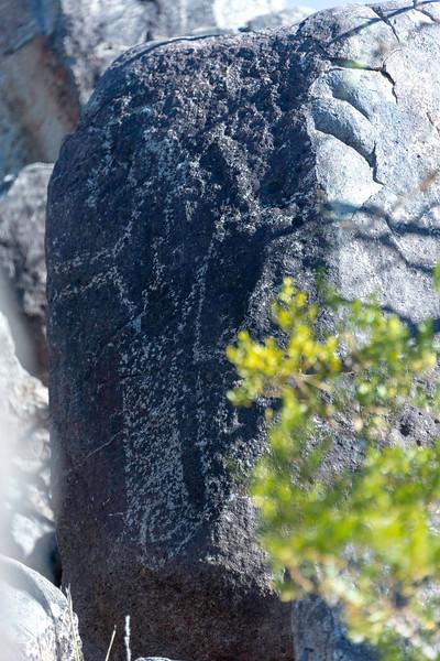 20181127-Petroglyphs-Tularosa-619614.jpg