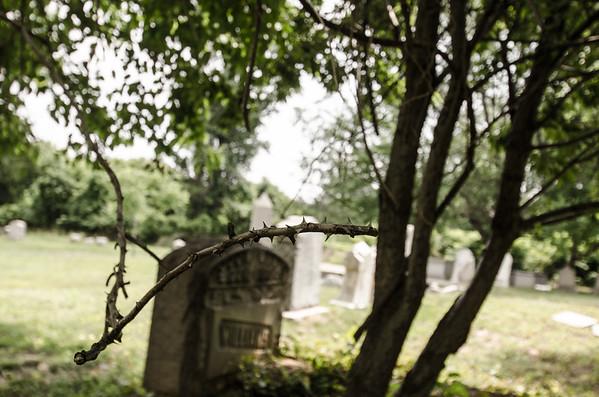Mount Moriah Cemetery (6-14-17)