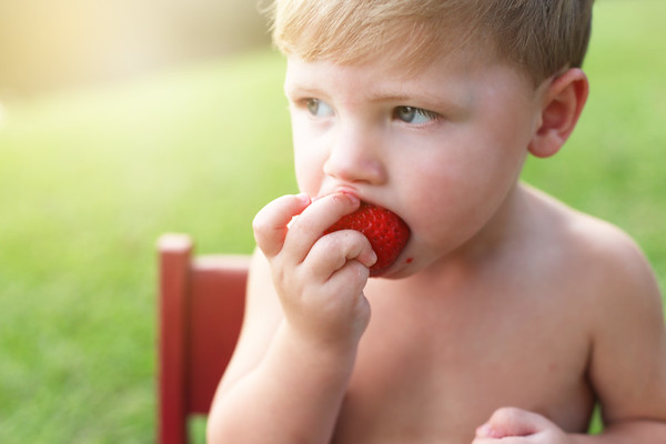 Ashby {Strawberry Mini Session}