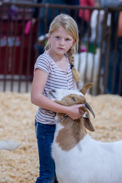 kay_county_showdown_goats_20191207-94.jpg