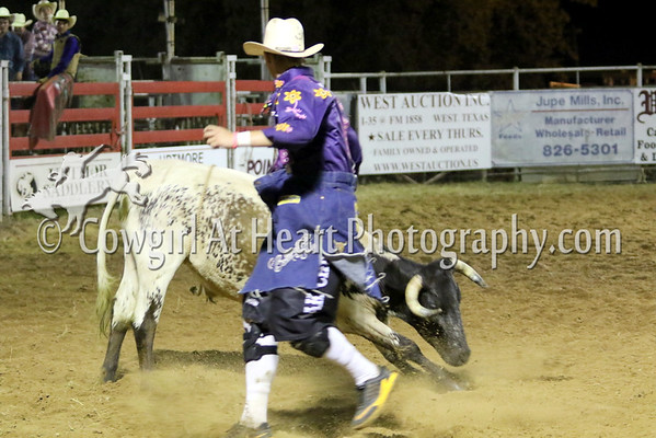 FREESTYLE BULL FIGHTS