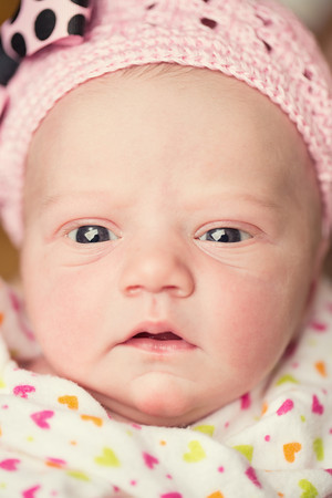 Berger newborn girl
