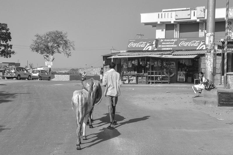 2014-03 On Road to Mysore 012.jpg