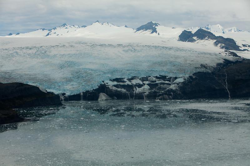 Alaska Icy Bay-3892.jpg