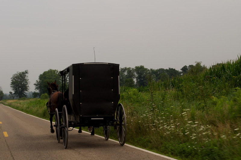 Horse-Drawn Amish Buggy in Wooster, Ohio