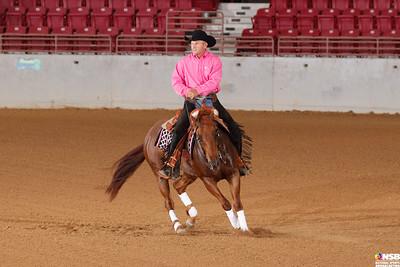 Wednesday Novice Horse Set 6 40-47
