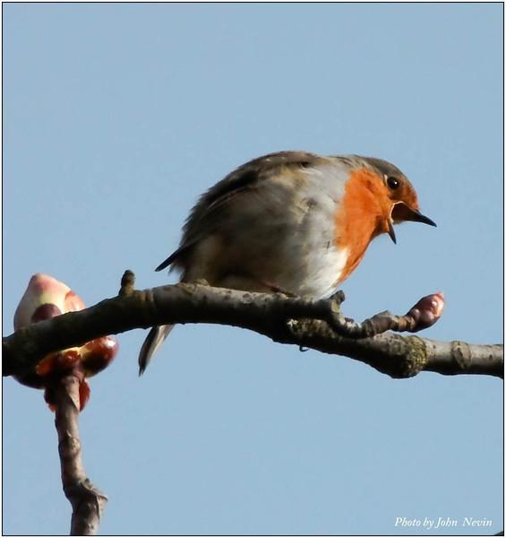 Good morning from Devon Park2011