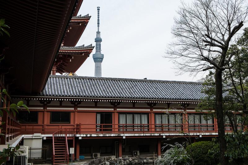 Tokyo Day 3 (264 of 271).jpg