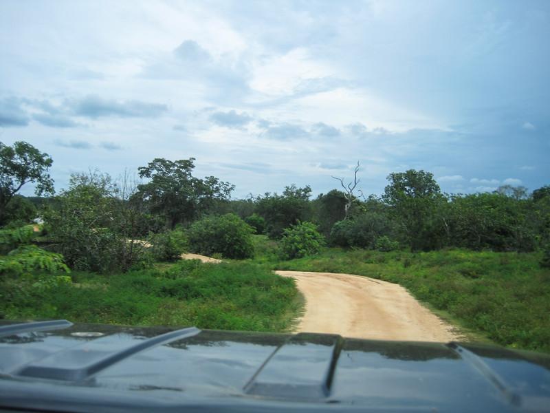 Sri_Lanka17-9567.jpg