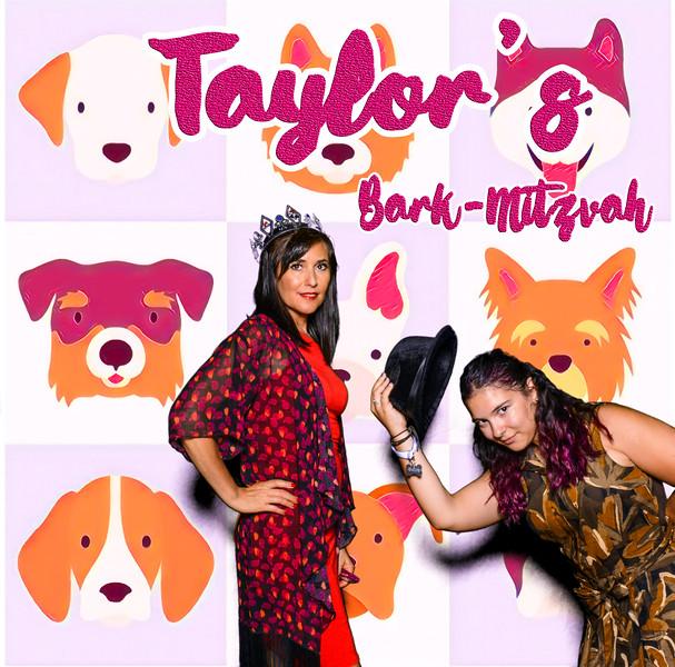Taylors pawmitzvah-20788.jpg