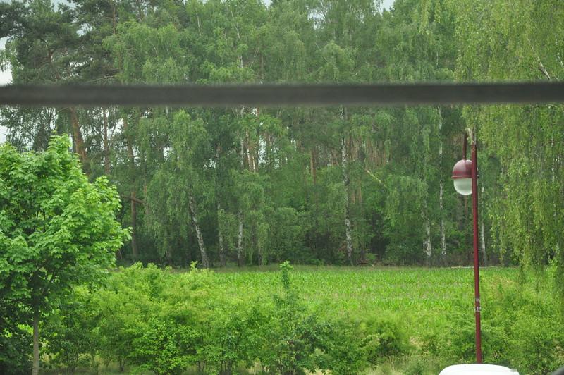 Blick aus dem Kinderzimmerfenster