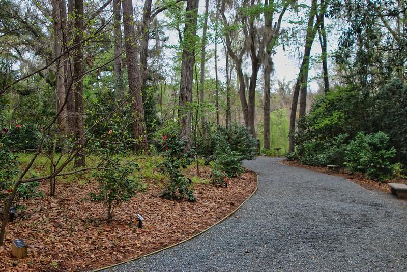 Woodland Gardens at Dorothy Oven Park