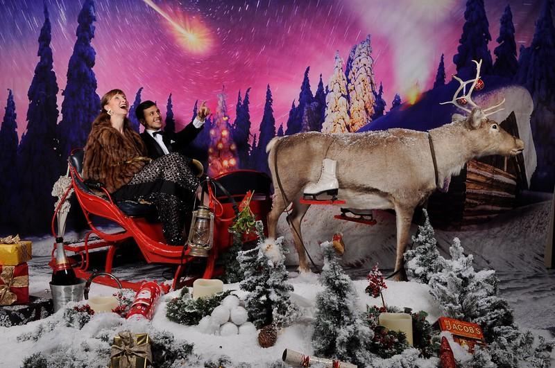 phototheatre reindeer christmas 6.jpg