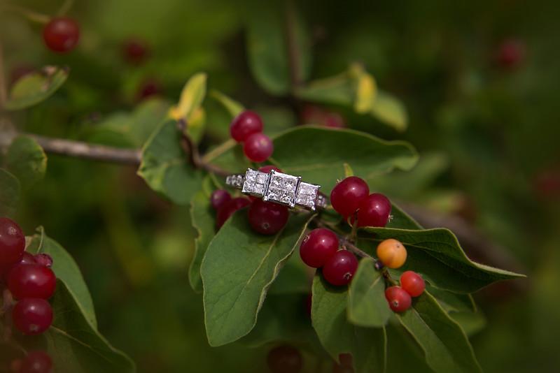 KBP-Engagement-6916-color25.jpg