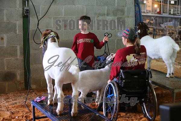 Candids & Special Needs Show