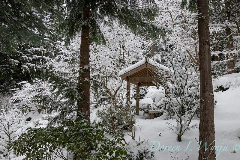 Winter wonderland_8824.jpg