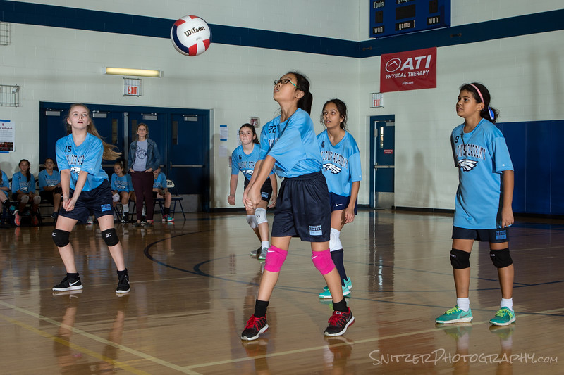 willows middle school volleyball 2017-901.jpg