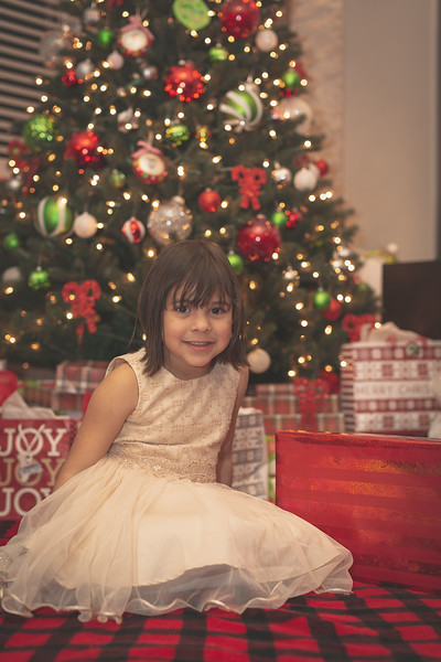 Gonzalez Christmas 2018 (21 of 105).jpg
