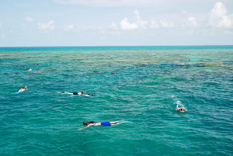 Snorkelers in Key West, Florida