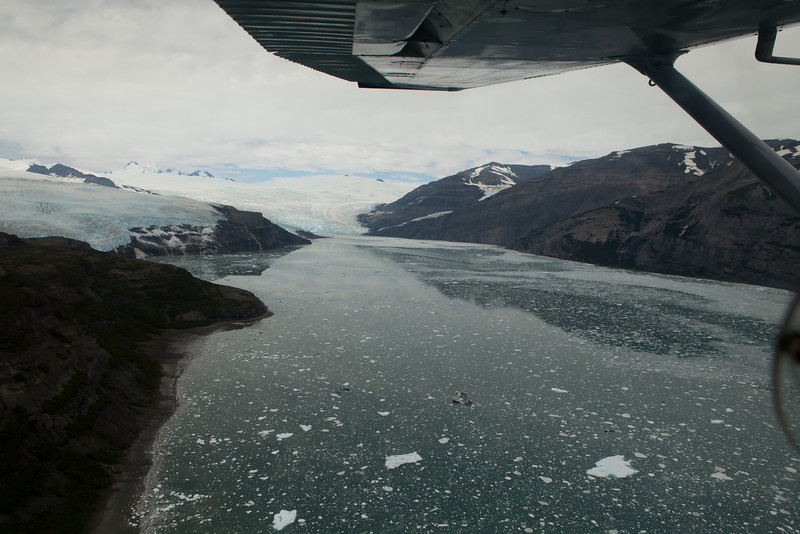 Alaska Icy Bay-3876.jpg