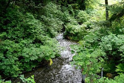 John Wayne Trail 06-13-09