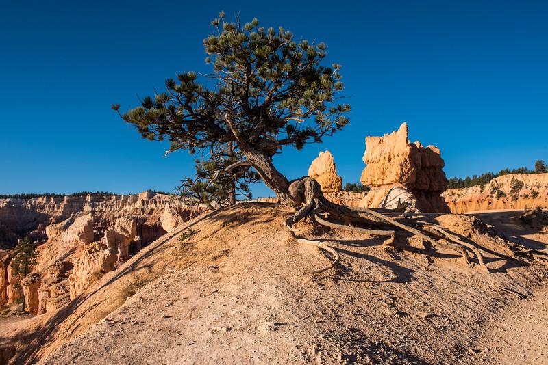 Bryce Canyon-30.jpg