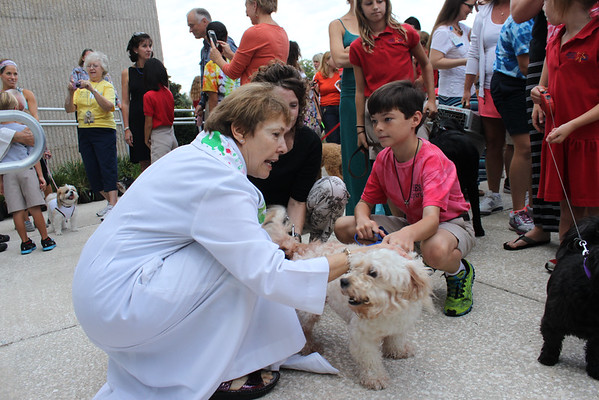 Blessing of the Pets 2014