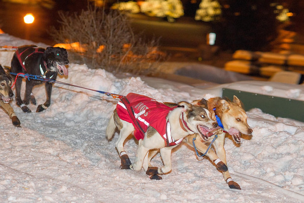 UP 200 Dog Sled Race 2014