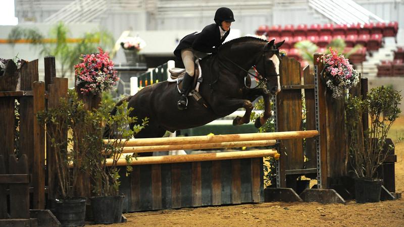 Horse show (20).jpg