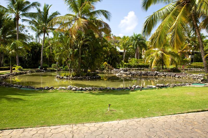 Punta Cana  2014-06-12 042.jpg