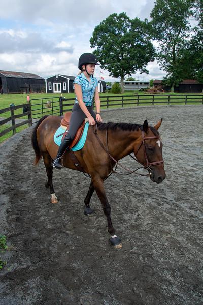 HMC Equestrian