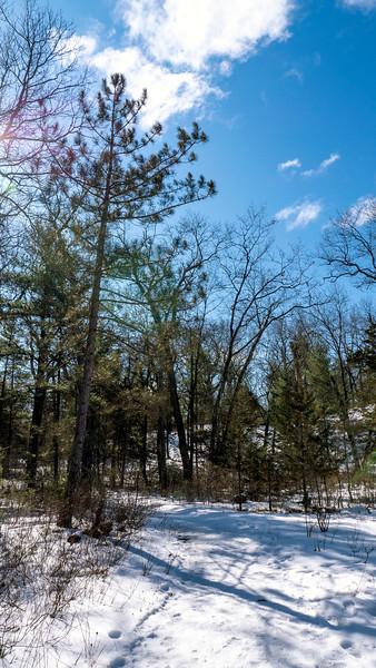 Ontario-Grand-Bend-Pinery-Provincial-Park-40.jpg