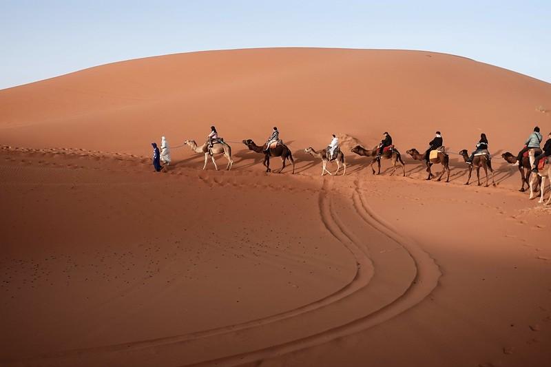 sahara desert morocco 2018 copy8.jpg