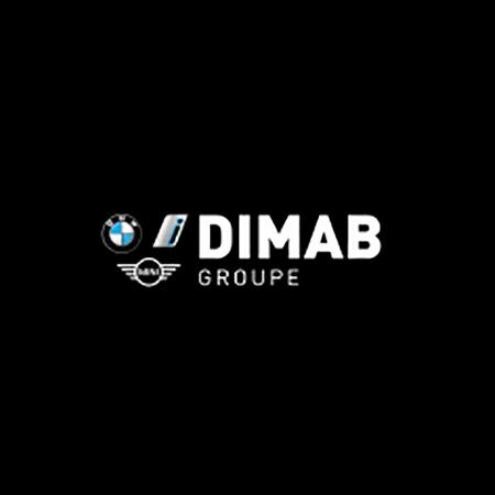 Dimab copie copie.jpg
