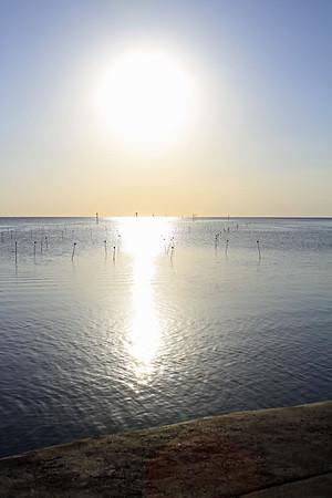 Florida 2011