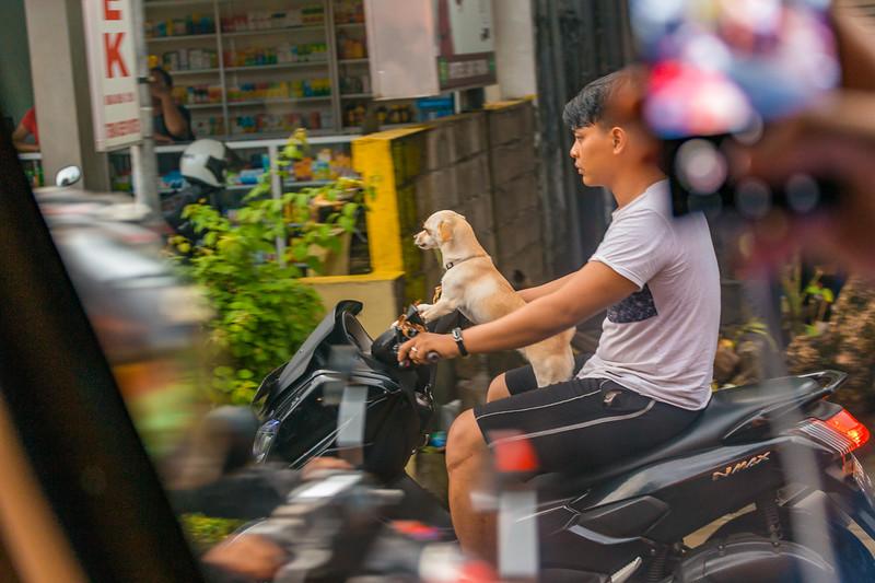 Bali (264).jpg