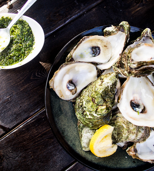 oysters with chimichurri.jpg