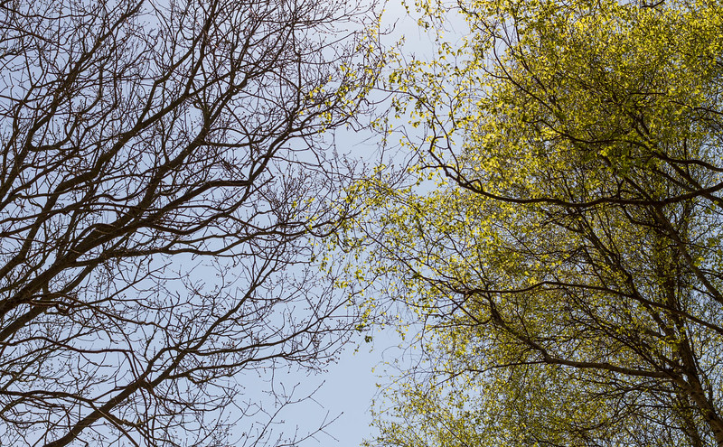 venö_2019-04-22_142251.jpg