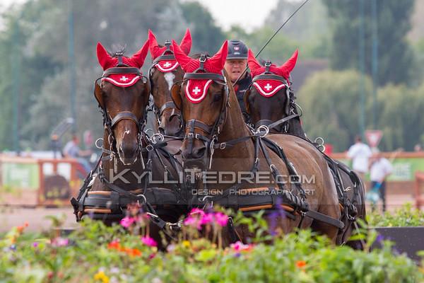 World Equestrian Games 2014